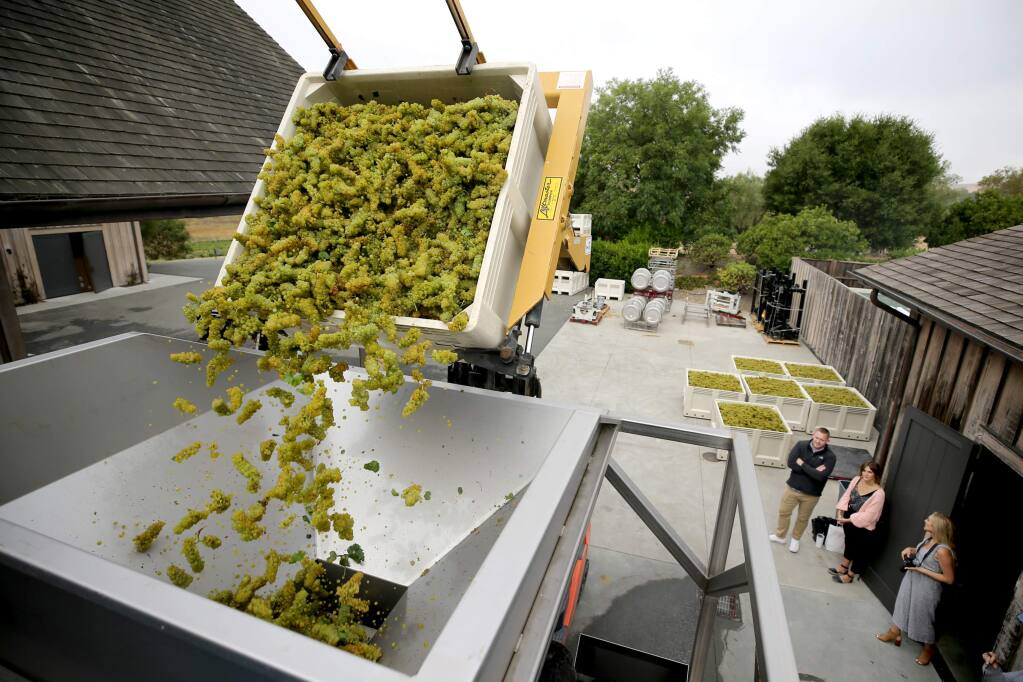 Employees crush the first round of chardonnay grapes as harvest gets underway at Ram's Gate Winery south of Sonoma on Tuesday, September 3, 2019. (BETH SCHLANKER/ The Press Democrat)