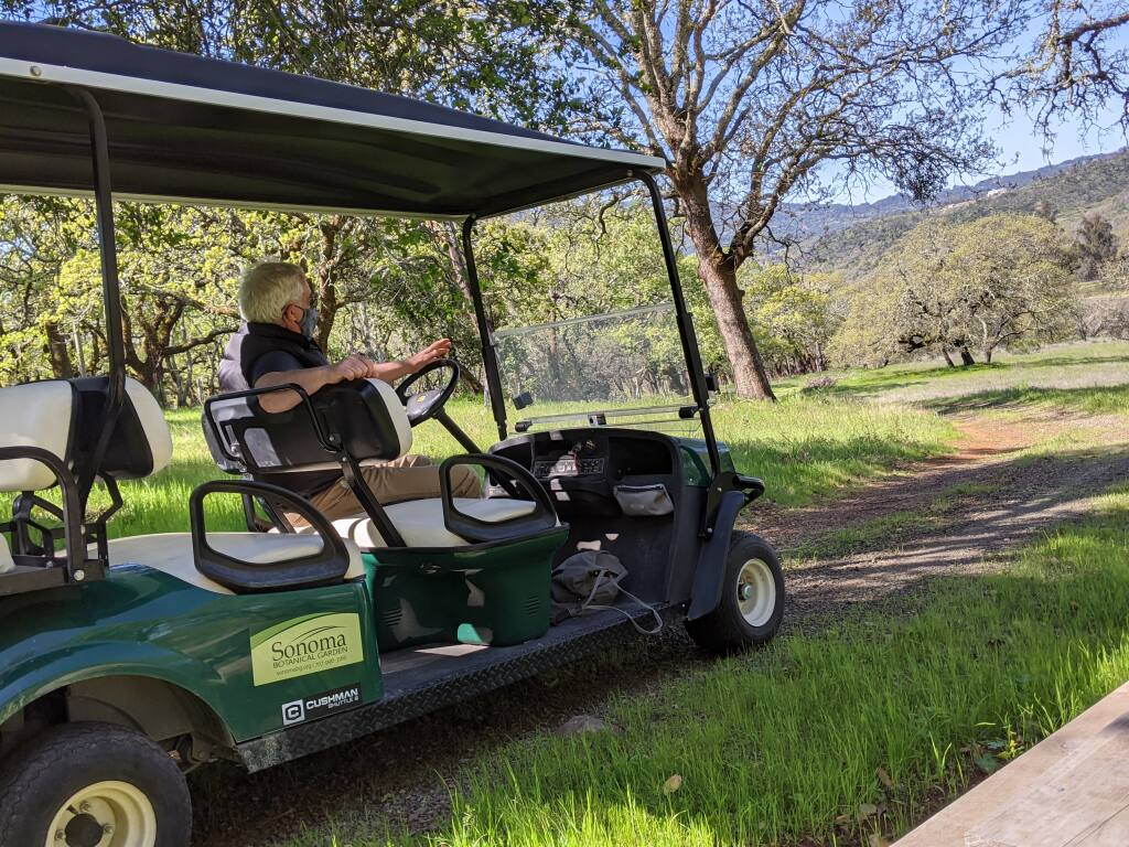 Scot Medbury, executive director of Sonoma Botanical Gardens - formerly known as Quarryhill - looks out over the path that take visitors to the California native plant section and leads to its Asian plants. (Anne Ward Ernst/Sonoma Index-Tribune)