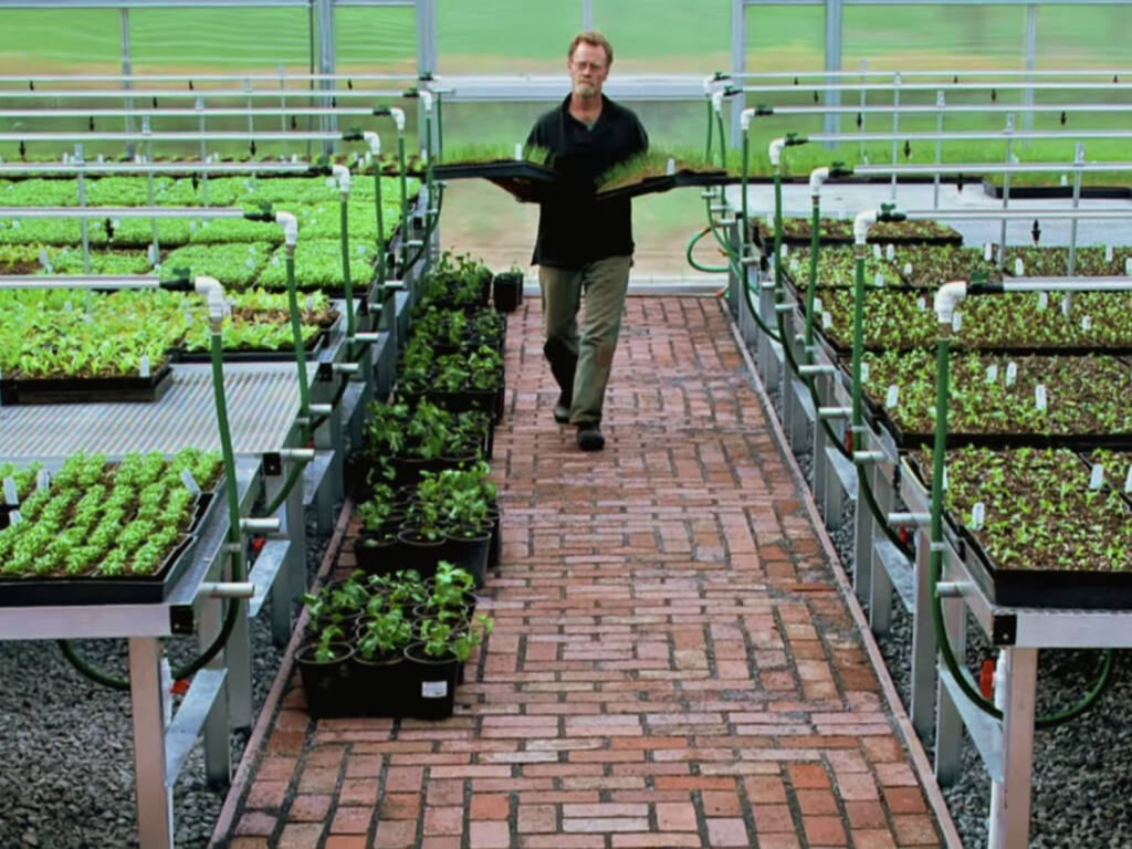 """Doug Fosling garden manager at OAEC in the Greenhouse where all the garden sale plants start. ( Photo: OAEC - YouTube channel """"OAEC Plant Sales - 100% California Certified Organic"""" video-Screen shot)"""