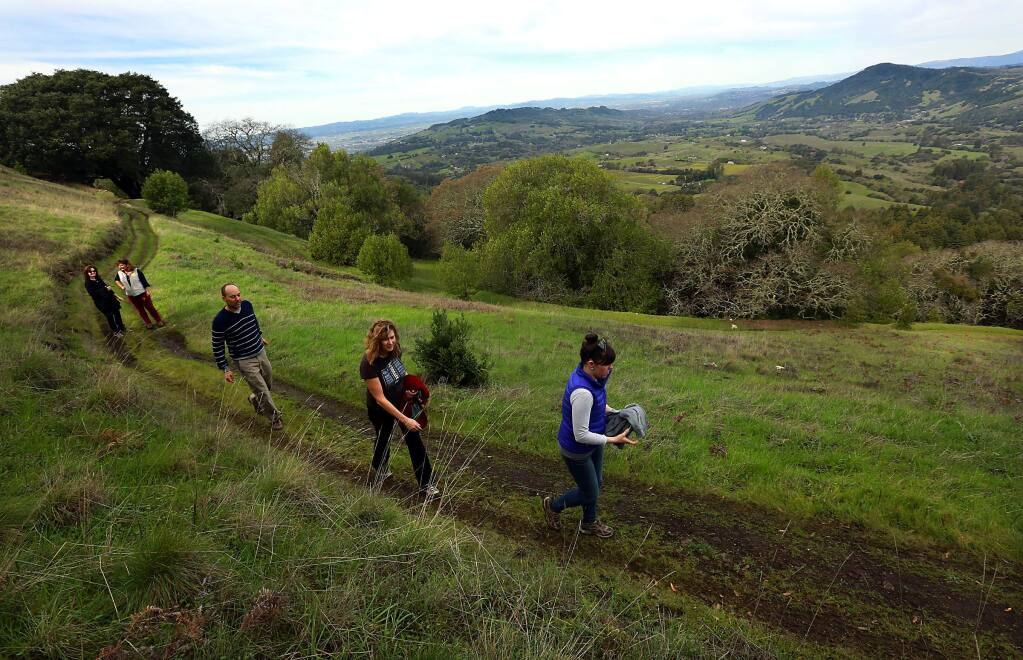 (r to l) Amy Richard, Caryl Hart, Bill Keene, Karen Davis-Brown, and Meda Freeman hike in the new North Sonoma Mountain Regional Park and Open Space Preserve with views overlooking Bennet north towards Santa Rosa. (Photo by John Burgess/The Press Democrat)