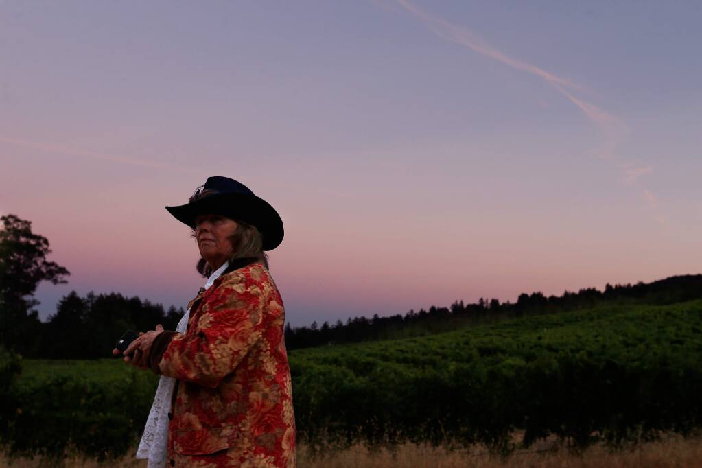 Jack London State Historic Park, Glen Ellen. Catch a glimpse of the sun setting over vineyards from the rolling hills at Jack London State Park. (Alvin Jornada/ The Press Democrat, 2016)