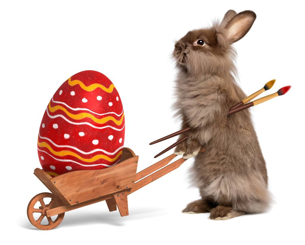 Let the rabbit do all the work this year – enjoy an Easter feast out in Sonoma.