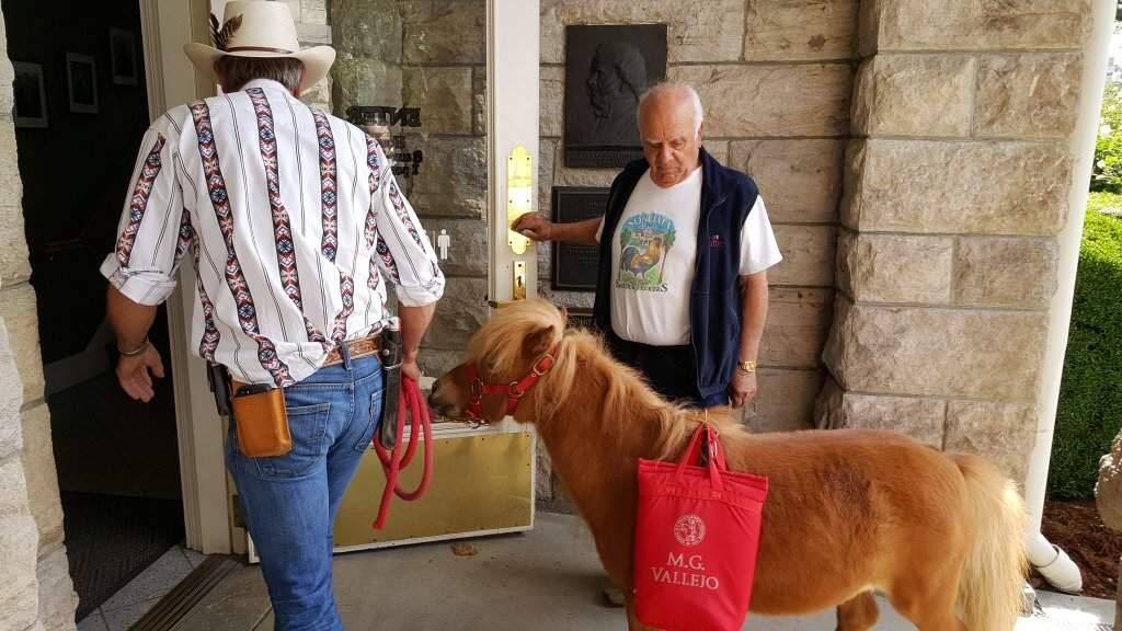 Opponents of Sonoma's pendng ban on gas leaf blowers deliver signatures via miniature horse Thursday to Sonoma City Hall. (Derek Moore/The Press Democrat)