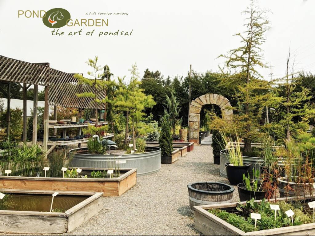 Pond & Garden Nursery