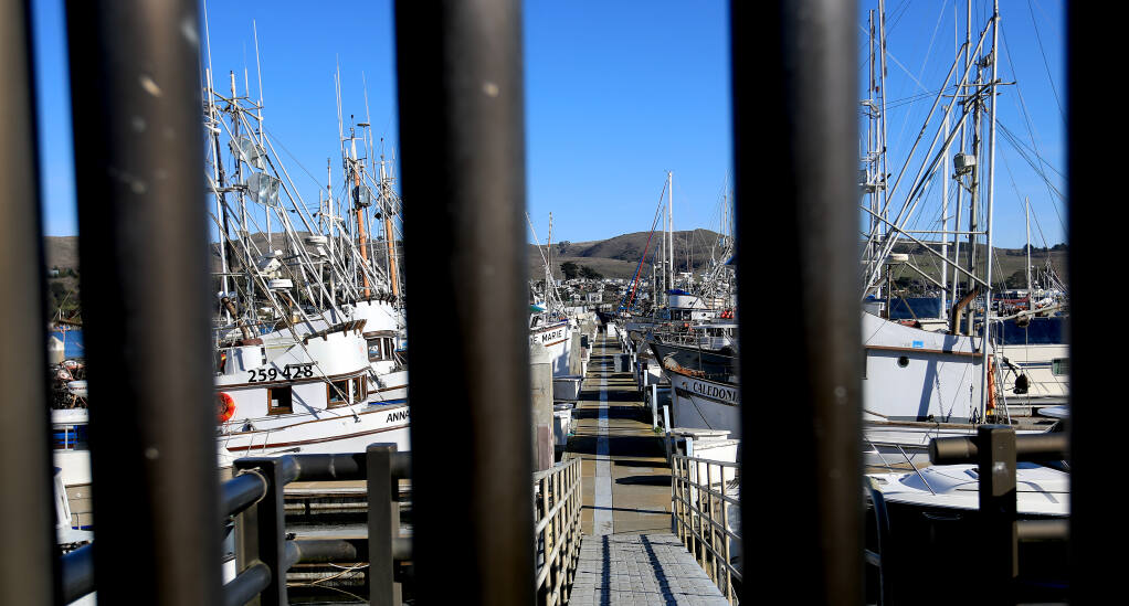Activity around the Bodega Bay crab fishing fleet is at a minimum, Tuesday, Jan. 5, 2021, at Spud Point Marina in Bodega Bay. Negotiations are underway for the wholesale price per pound. (Kent Porter / The Press Democrat) 2021