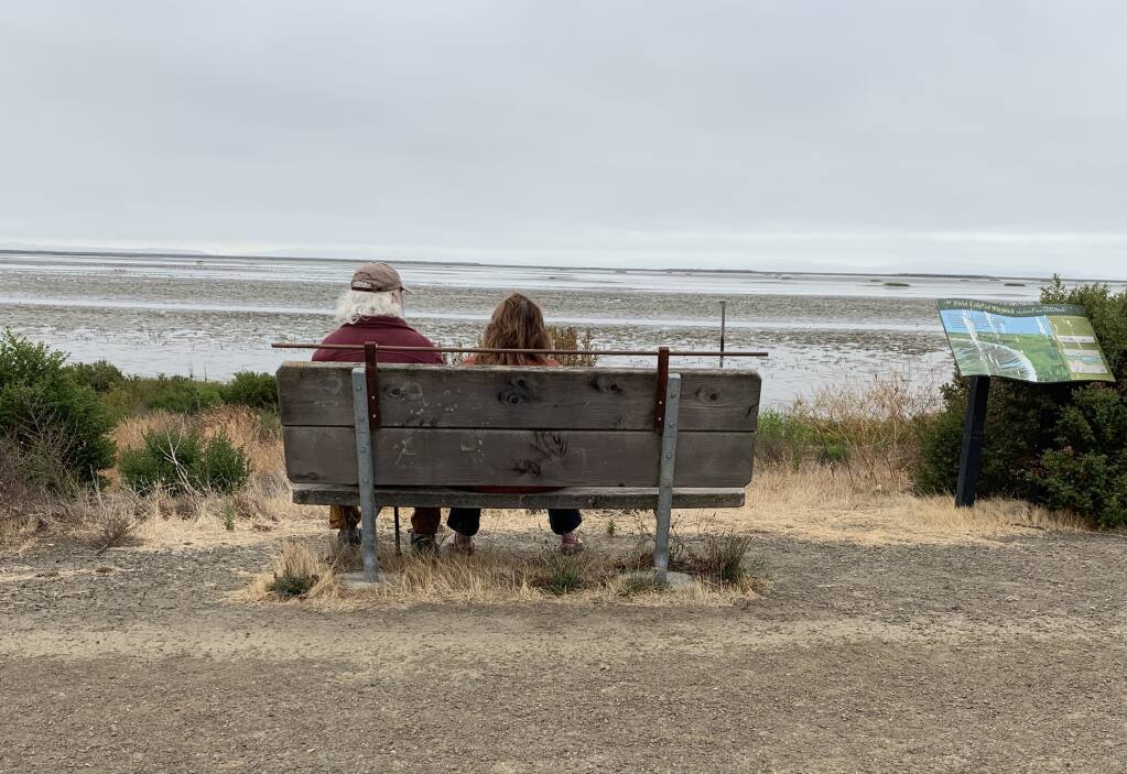 BENCH WARMERS: A couple watch the marsh at Sears point Ranch, on a foggy Saturday morning. (Photos by David Templeton).