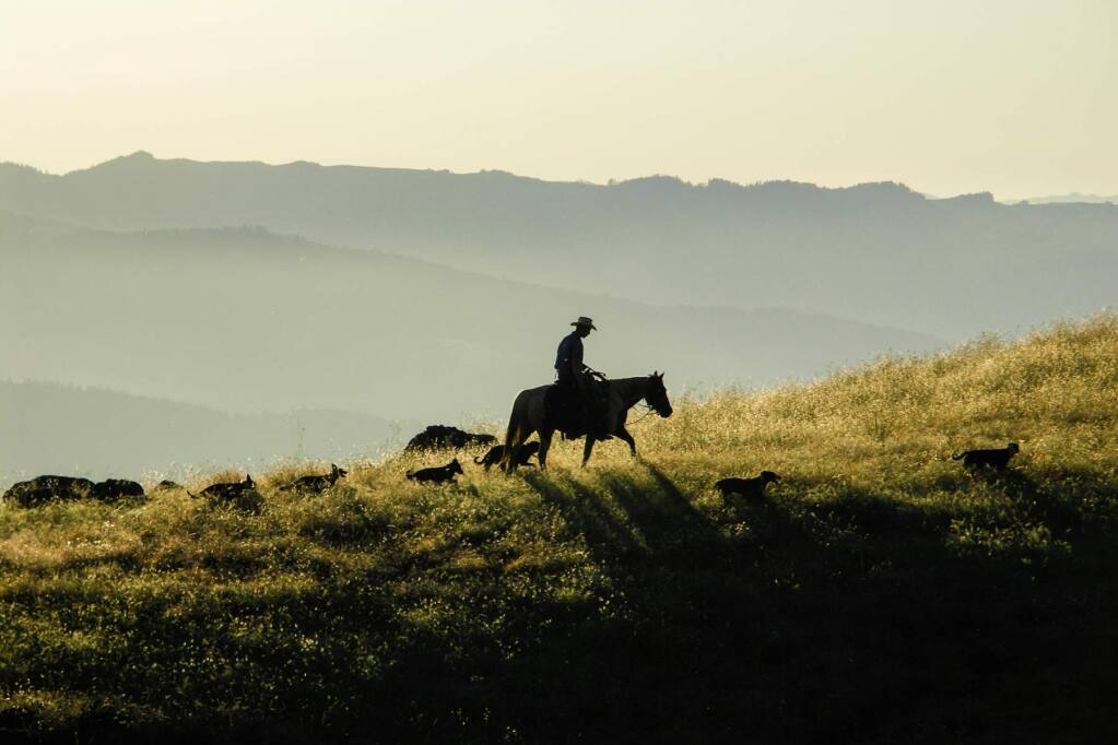 Stock market titan Dean Witter's 27,000-acre ranch north of the Round Valley Indian Reservation is on the market for $31 million. The property spans Mendocino and Trinity counties, and is practically the size of San Francisco. (Photo: Brooks Witter)