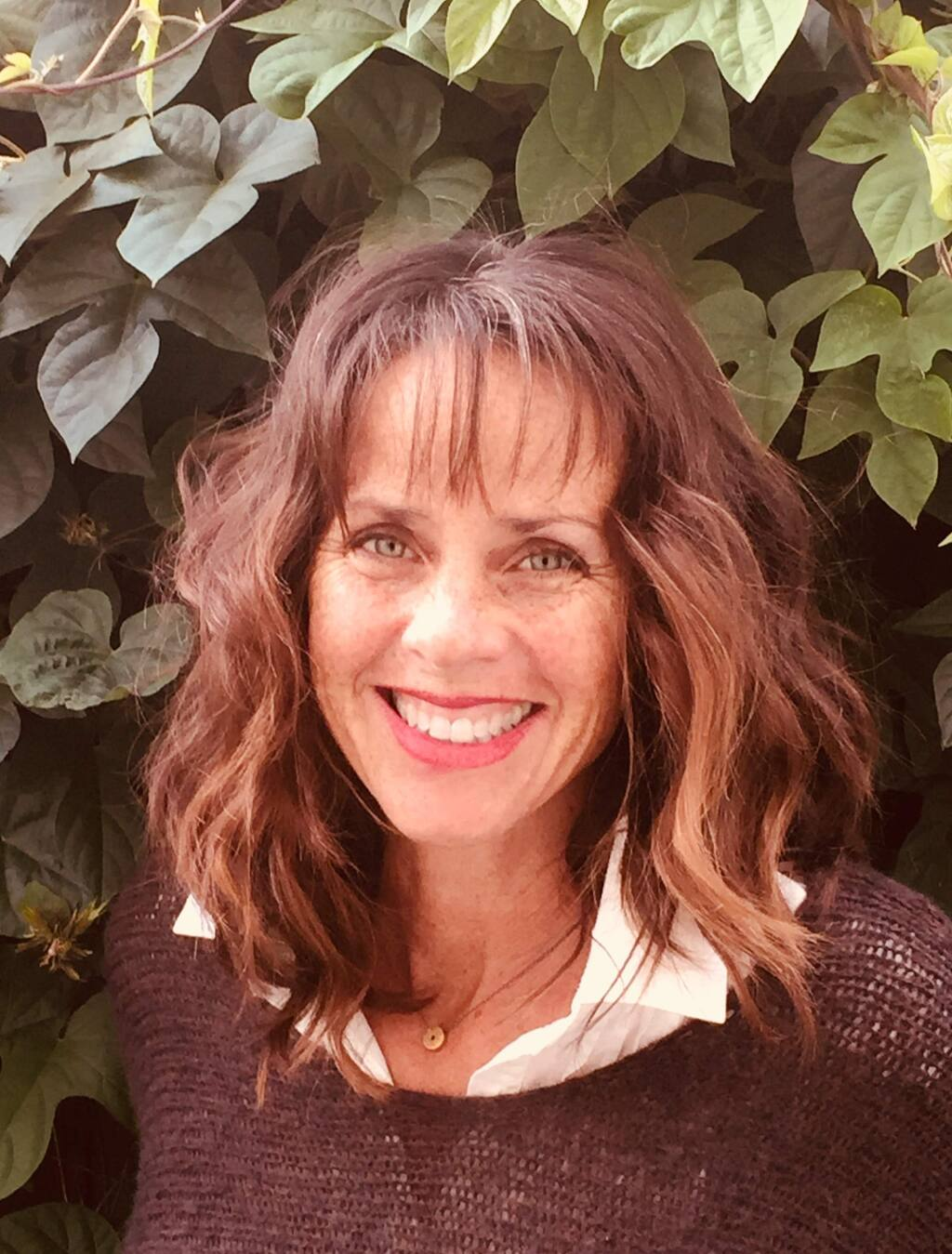 Author Lisa Summers will read from her new novel at Bump Cellars.