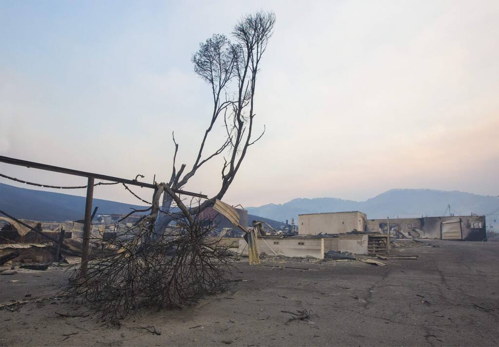Rebuilding the damage caused by the October fires could take years, estimate local authorities.