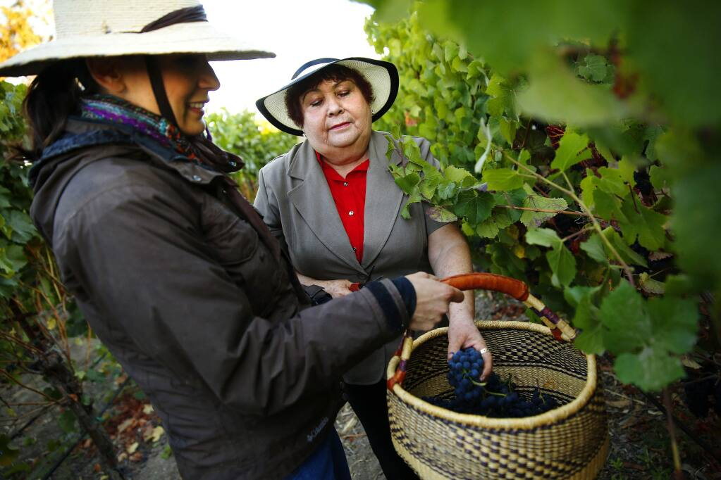 Vanessa Robledo, left, and her mother Maria Robledo inspect their vines during harvest at Robledo Family Winery in Napa in 2014. (CONNER JAY/ PD FILE)