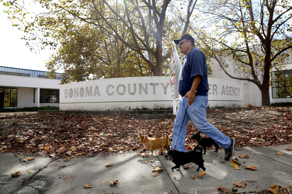 Juan Alfaro walks his dogs past 2150 W. College Ave., the former Sonoma County Water Agency campus, in Santa Rosa, on Monday, November 2, 2015. (BETH SCHLANKER/ The Press Democrat)