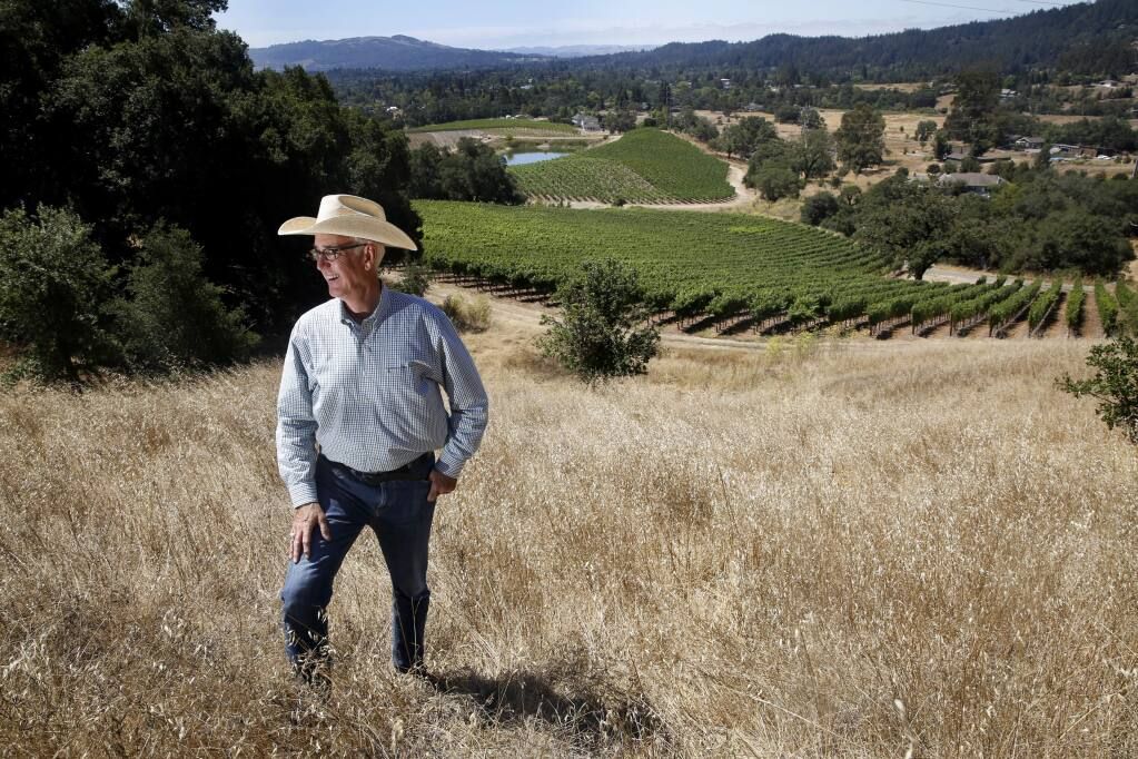 Dick Keenan, the owner of Kick Ranch, at his vineyard in Santa Rosa, on Monday, August 3, 2015 .(BETH SCHLANKER/ The Press Democrat)