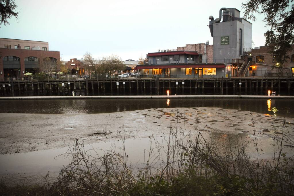 The turning basin of the Petaluma River at low tide. The city was unable to secure funds to dredge the river.(CRISTINA PASCUAL/ARGUS-COURIER STAFF)