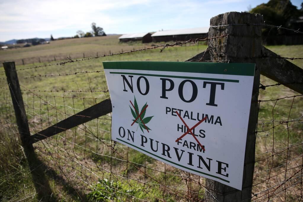 A sign along Purvine Road voices opposition to marijuana being grown at Petaluma Hills Farm in Petaluma, Ca. Photo taken on Thursday, November 1, 2018 in Petaluma, California . (BETH SCHLANKER/The Press Democrat)