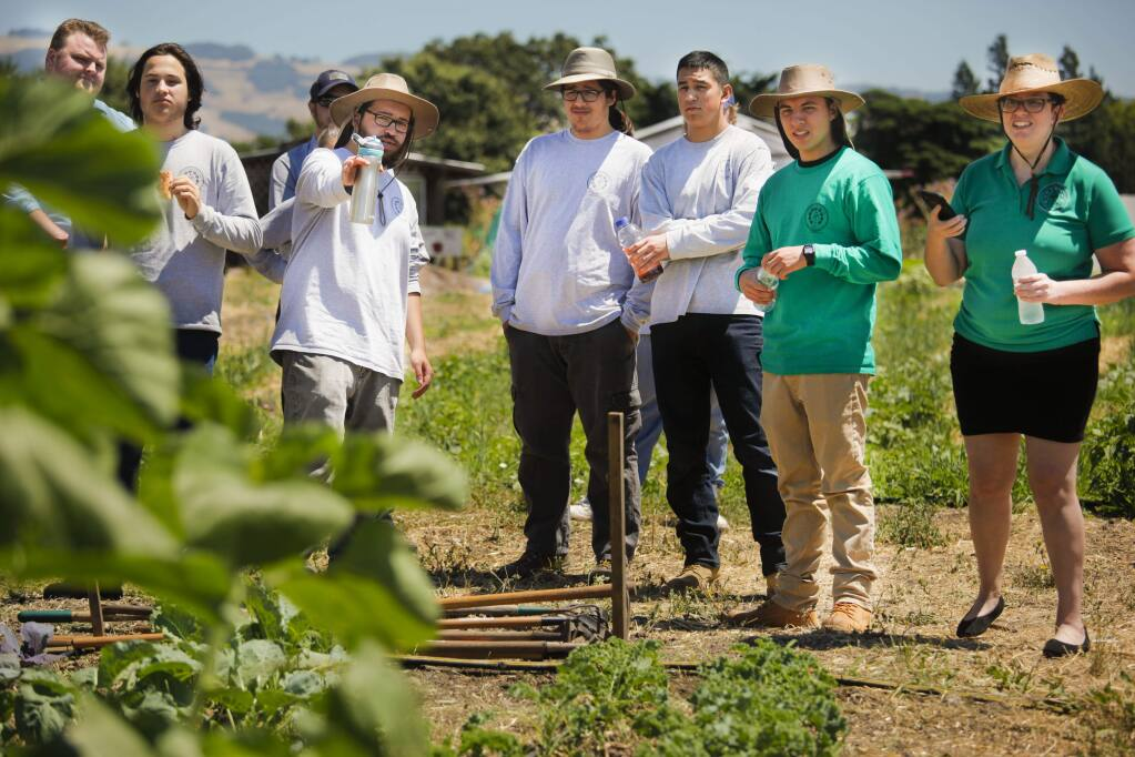 The Sonoma County Youth Ecology Corps provides summer work and learning opportunities across the county. (CRISSY PASCUAL/ARGUS-COURIER STAFF)