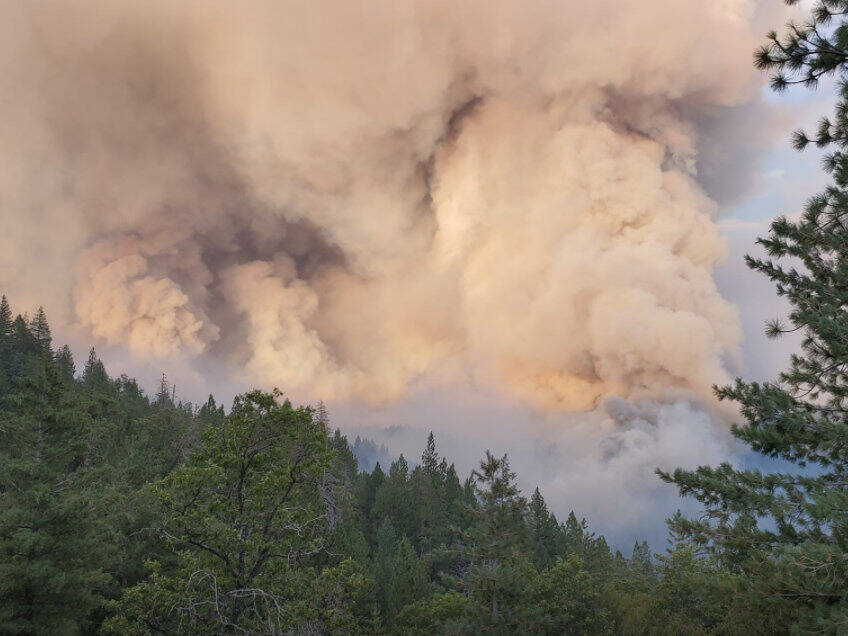 August Complex fire - Rockwell burns Aug. 18, 2020. Photo posted to the U.S. Forest Service - Mendocino National Forest's Facebook page on Aug. 28, 2020.  (Roy Jones)