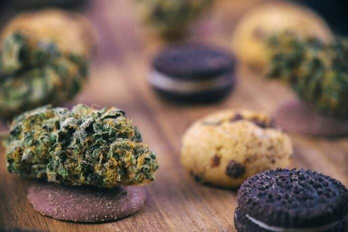 Cannabis nugs over infused chocolate chips cookies - medical marijuana edibles concept (Shutterstock)