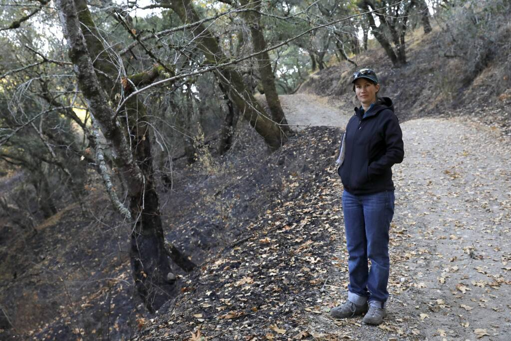Hattie Brown, a natural resources coordinator with Sonoma County Regional Parks, stand along section of burned trail at Shiloh Ranch Regional Park in Windsor, on Wednesday, November 1, 2017. (BETH SCHLANKER/ The Press Democrat)
