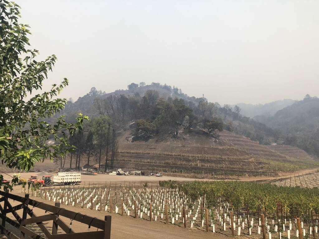 This photo, provided by Skipstone Ranch spokeswoman Susan Barnes, shows a portion of the property in the wake of the 2019 Kincade fire. Skipstone officials say grading work was necessary to remove burned trees and stabilize the hillside. (Susan Barnes)