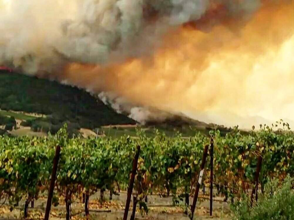 Fire burns behinds the Gundlach Bundschu Winery in Sonoma on Monday, Oct. 9, 2017. (@KATEKISSET)