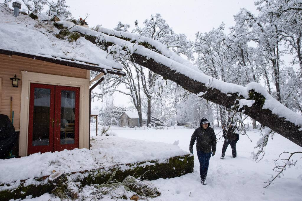 Bobby Roberts walks under tree that fell on a house on North 6th Street in Creswell, Ore., Monday, Feb. 25, 2019, after a heavy snow blanketed the Willamette Valley. He and a group of other volunteers were helping to remove the tree for the owner who was out of town when the storm hit. (Chris Pietsch/The Register-Guard via AP)