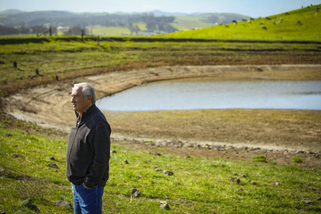 Don DeBernardi discusses and shows the effects of recent drought conditions on his dairy farm in Two Rock on Monday, March 29, 2021. (CRISSY PASCUAL/ARGUS-COURIER STAFF)