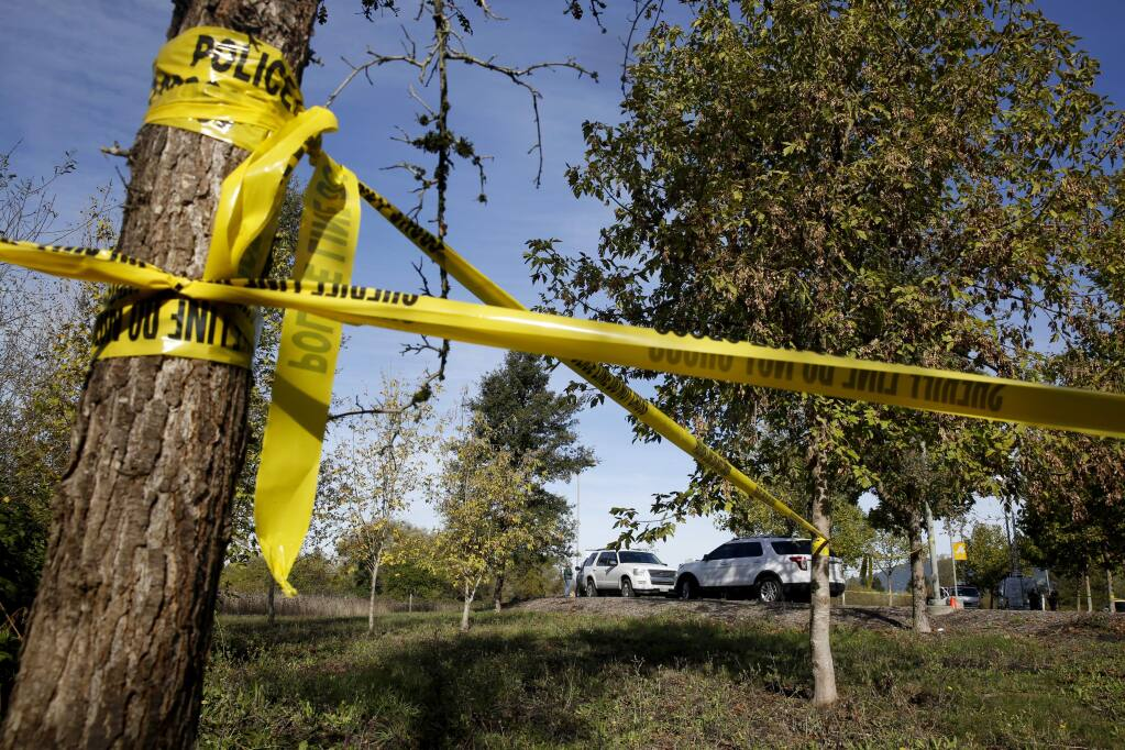 Members of the Sonoma County Sheriff's detectives work at the scene where a partially buried body was found in a wooded area near the Nparking lot on the Sonoma State University campus in Rohnert Park , on Thursday, November 3, 2016. (BETH SCHLANKER/ The Press Democrat)
