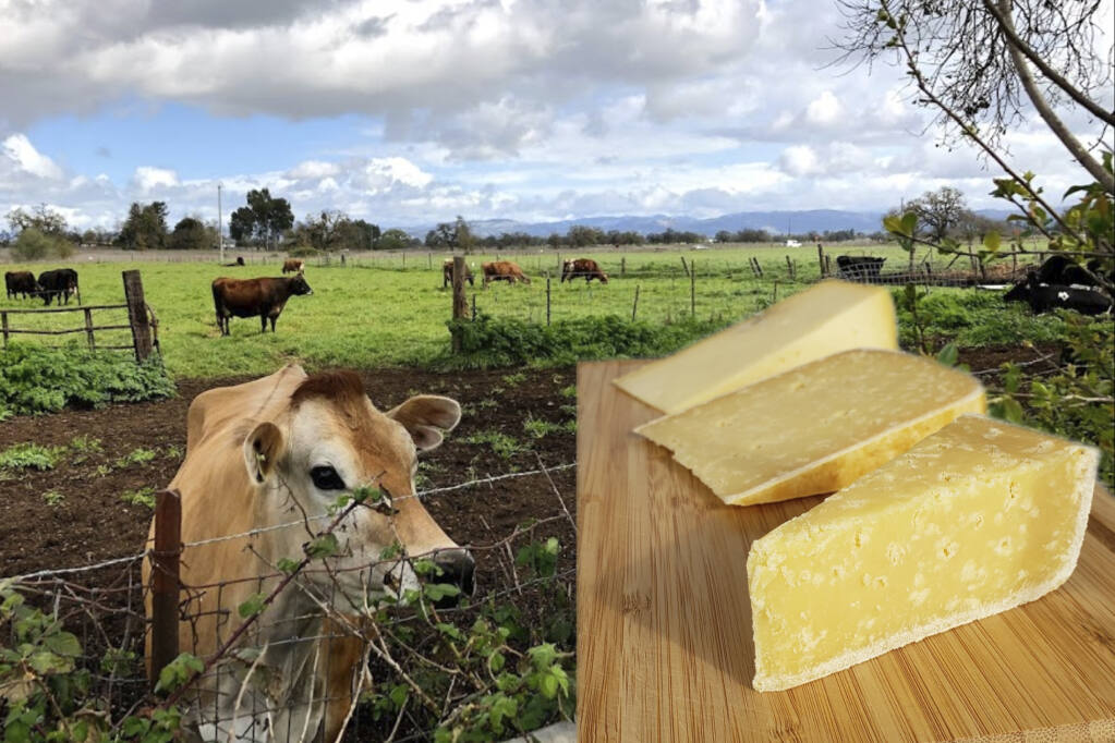 Joe Matos Cheese Co.- A journey to the Azores in our own ...