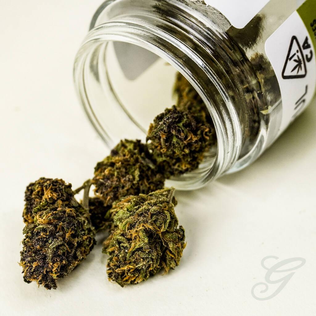 Cannabis from Solful. Jason Windsor photo.