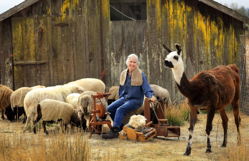 Fiber artist and farmer Leslie Adkins raises sheep, goats, alpaca and a llama for the material she spins, knits and felts into hats, scarves, blankets and rugs on her Heartfelt Farm in Santa Rosa. (John Burgess / The Press Democrat)