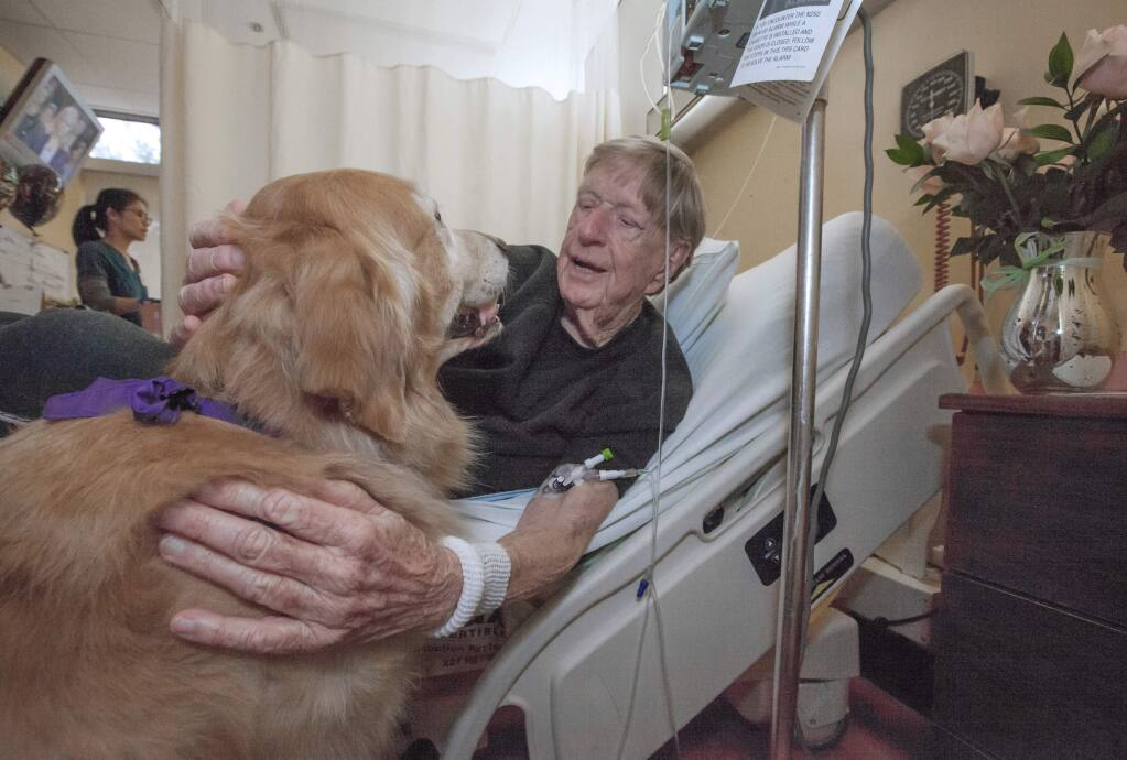 Robert Koenig's stay in the Skilled Nursing Unit at Sonoma Valley Hospital is briefly, joyously interrupted by a visit from an accredited therapy dog, (FIle Photo)