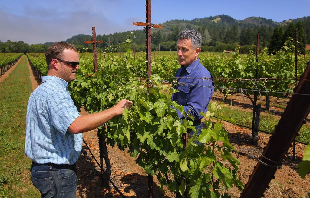 St. Francis Winery President and CEO Christopher Silva, right, is given an update on the status of the vines by vineyard manager Jake Terrell in 2016. (CHRISTOPHER CHUNG/ PD)