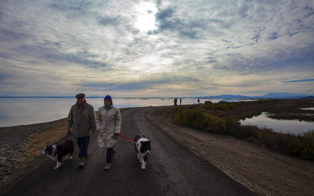 Robbi Pengelly/Index-TribuneA couple walk their dogs on a path near Sears Point that will eventually wind its way around the Bay.