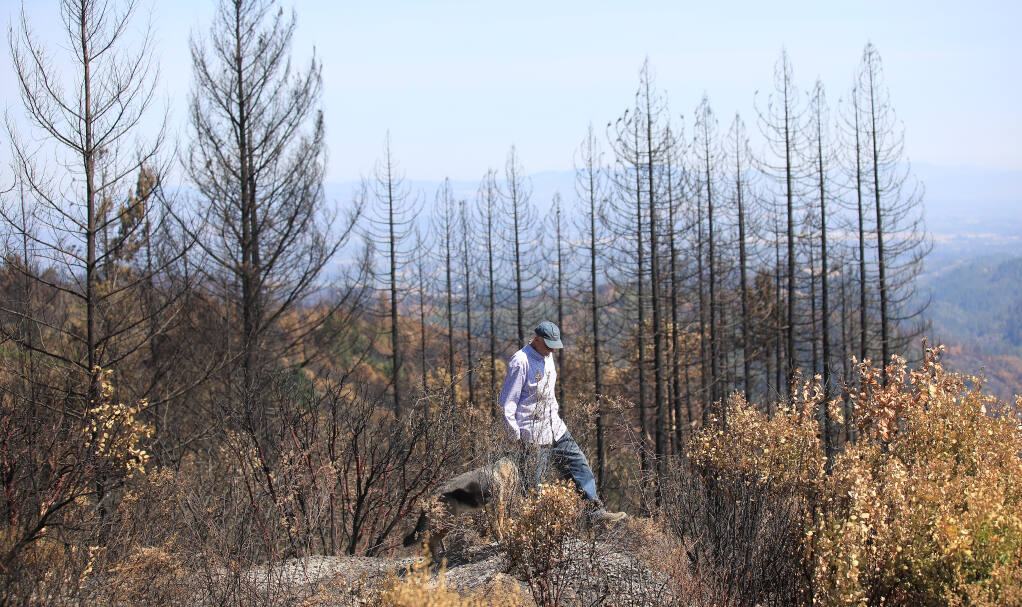 Charles Christianson checks his property McCray Ridge Road near his home flattened by the Walbridge fire, Friday, Sept. 4, 2020.  (Kent Porter / The Press Democrat)