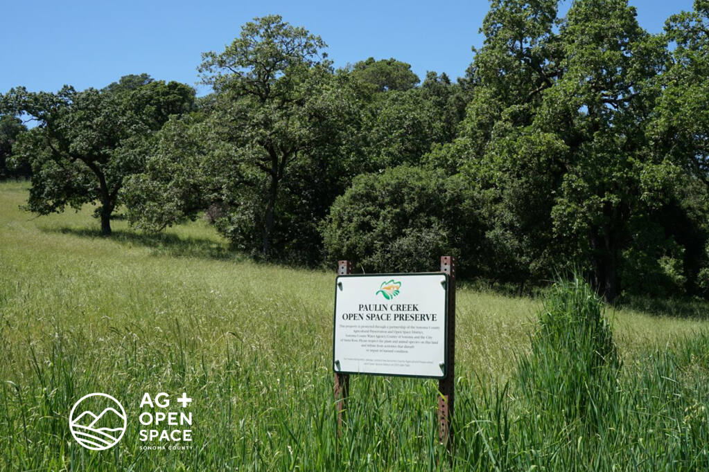 Should the county succeed in selling the Chanate old Sutter Hospital property, it will bring to a close perhaps its most prolonged and controversial land use project. The new sale process will exclude a nearly 10-acre portion of the site that features the beloved Pauline Creek grassy meadow neighbors have long understood to be part of an open space preserve.