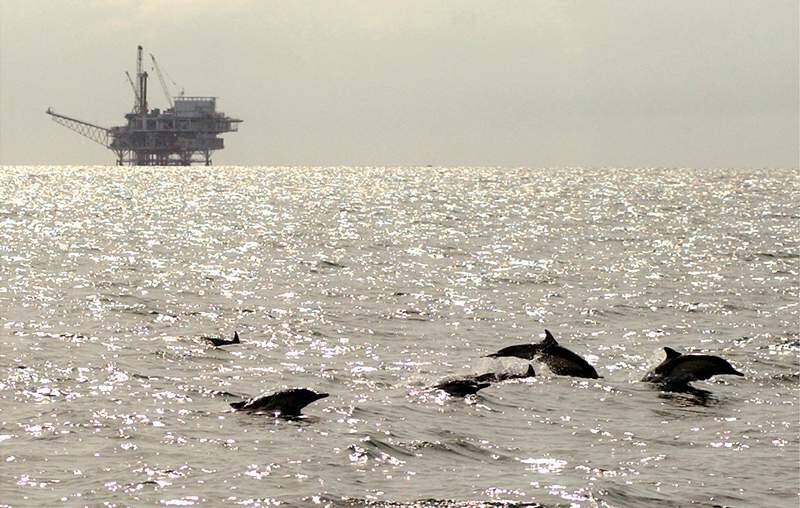 A pod of dolphins frolic in federal waters in the Santa Barbara Channel near oil platform Grace, off Ventura, Calif., in this file photo taken March 2, 2005. (AP Photo/Santa Barbara News-Press, Mike Eliason, File)