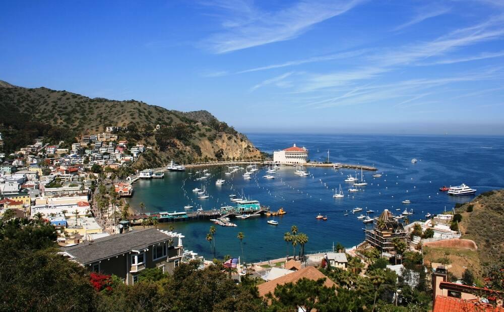Catalina Island (L.A. Nature Graphics / Shutterstock)
