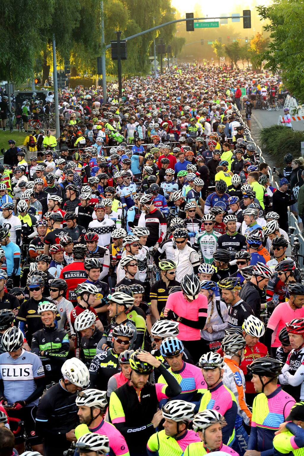 Over 6,000 riders participated in the 2015 Levi's GranFondo through west Sonoma County. (JOHN BURGESS / The Press Democrat)
