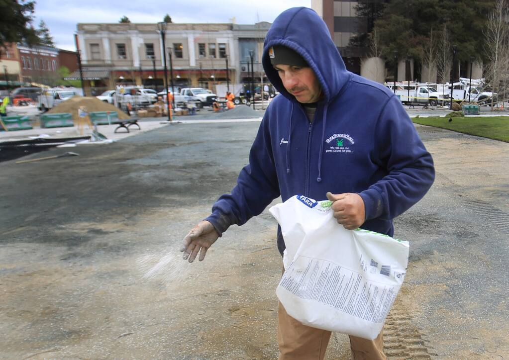 Juan Gonzalez distributes fertilizer as new sod is placed in the reunification of Old Courthouse Square project, Monday March 20, 2017 in Santa Rosa. (Kent Porter / The Press Democrat) 2017