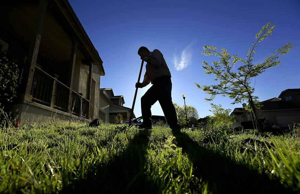 Carlos Ramirez of Sonoma Mountain Landscape digs holes for drought-tolerant plants that will replace part of a lawn at a Windsor home in April 2013. Replacing your lawn with native and drought-resistant plants is one of the most effective ways to lower your water consumption. (Kent Porter / Press Democrat)