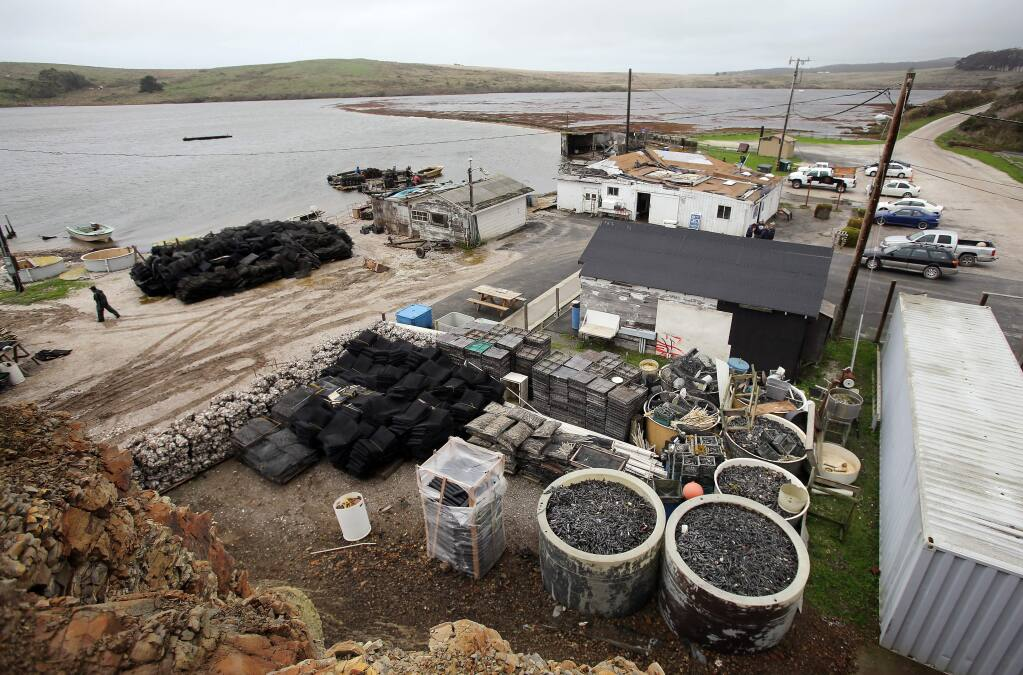 Drakes Bay Oyster Co. (PD FILE)
