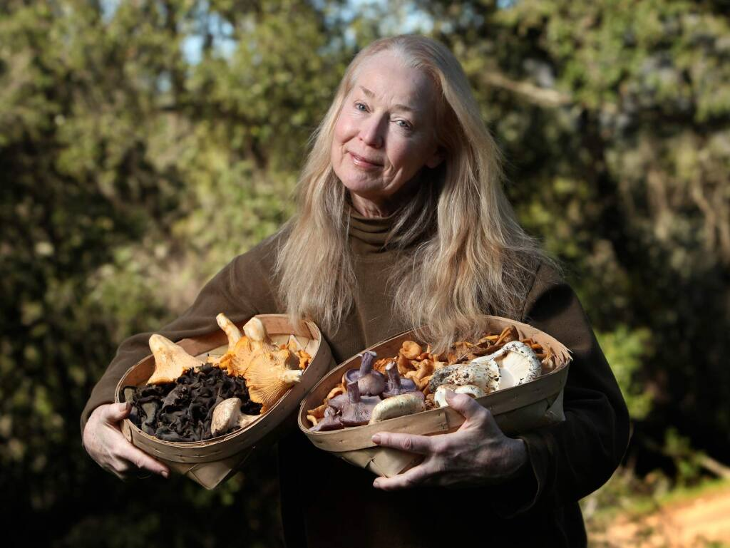 The PRess DemocratConnie Green, founder and head huntress of Wine Forest Wild Mushrooms, shows off chanterelles, blacks, matsutake, blewitt, hedgehog, and yellow feet mushrooms gathered the forests of northern California.