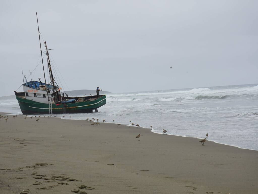 This 54-foot commercial fishing boat ran aground off South Salmon Creek Beach in the early hours of Sunday, Sept. 11, 2016. (COURTESY OF CHRIS HOWRY)