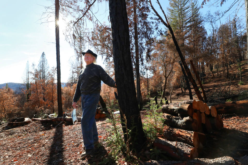 Sam Salmon is considering environmentally friendly options on what to do with his 40-acre property and the trees burned in the Walbridge fire along Cloud Ridge Road, near Healdsburg. (Christopher Chung/ The Press Democrat)