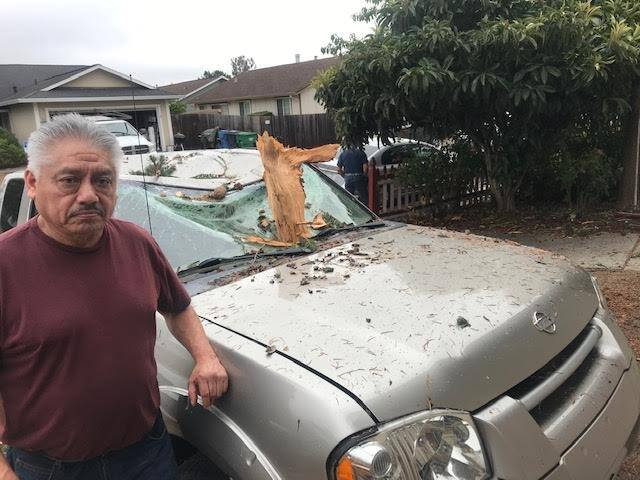 """Efrain Andrede stands beside his pickup on Becky Court in Rohnert Park on Friday, Sept. 10, 2021.. The truck was one of at least four vehicles damaged by fragments of a tree in Andrede's front yard that """"exploded,"""" he said, when struck by lightning around 9:15 p.m., Thursday.  (Austin Murphy / The Press Democrat)"""