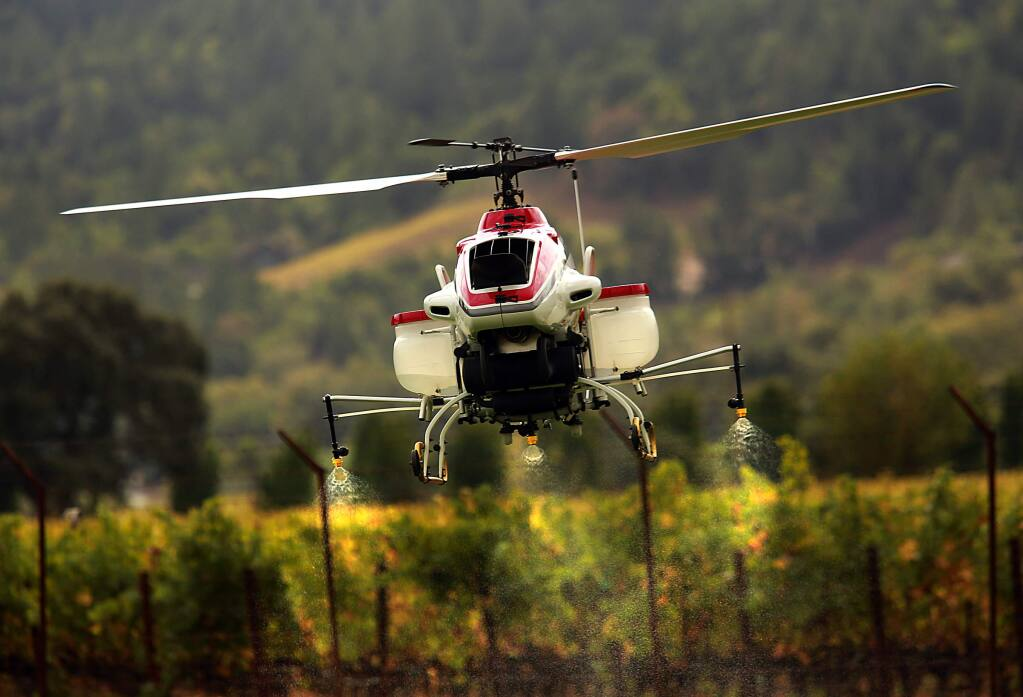 Researchers at the U.C. Davis Oakville Station are studying whether drones would be economically effective applying fertilizers or pesticides to vineyards. A Yamaha RMAX helicopter was fitted with sprayers containing water for a demonstration on Wednesday. (JOHN BURGESS/ PD)