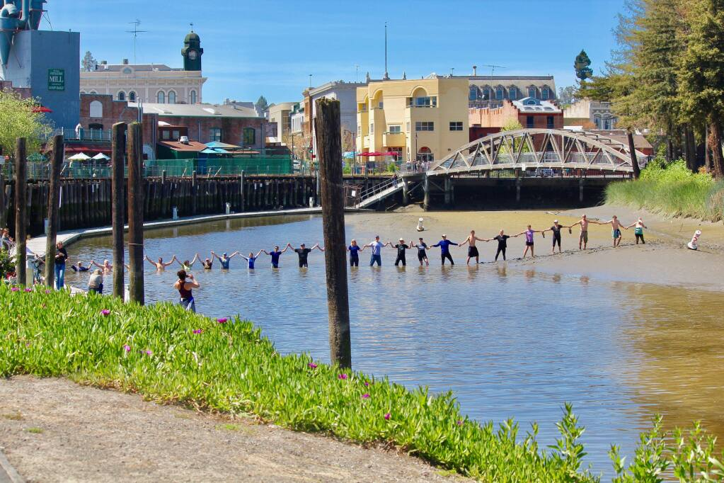 Petaluma River enthusiasts demonstrate how shallow the river has become due to a lack of dredging on April 1. STEFANY HOPKINS