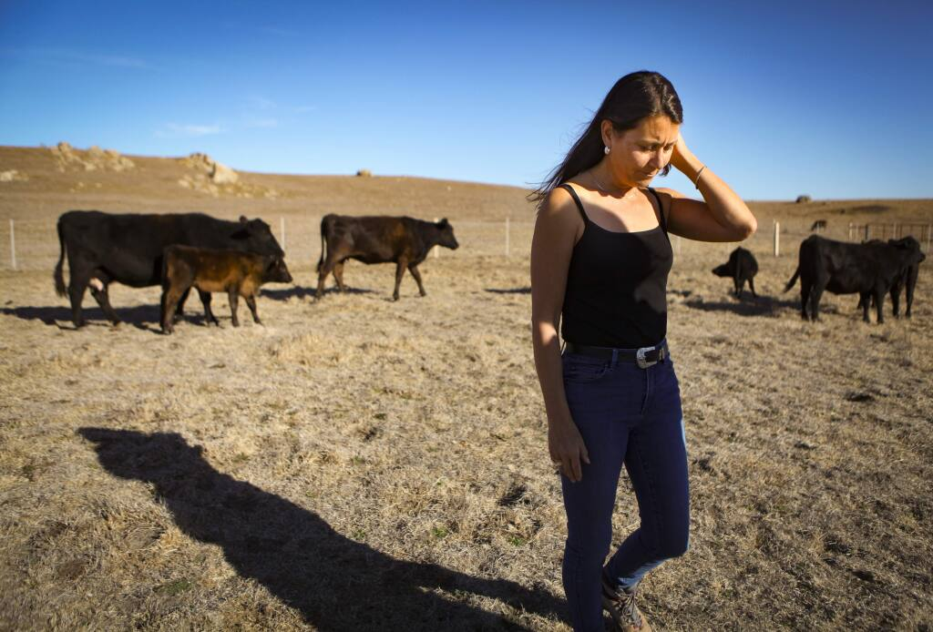 Pamela Torliatt, co-owner of Progressive Pastures, a cattle ranch in Tomales that provides locally-sourced grass-fed beef to Petaluma Market is being forced to close their business after Marin Sun Farms told them that they will no longer slaughter animals from farms other than their own. (CRISSY PASCUAL/ARGUS-COURIER STAFF)