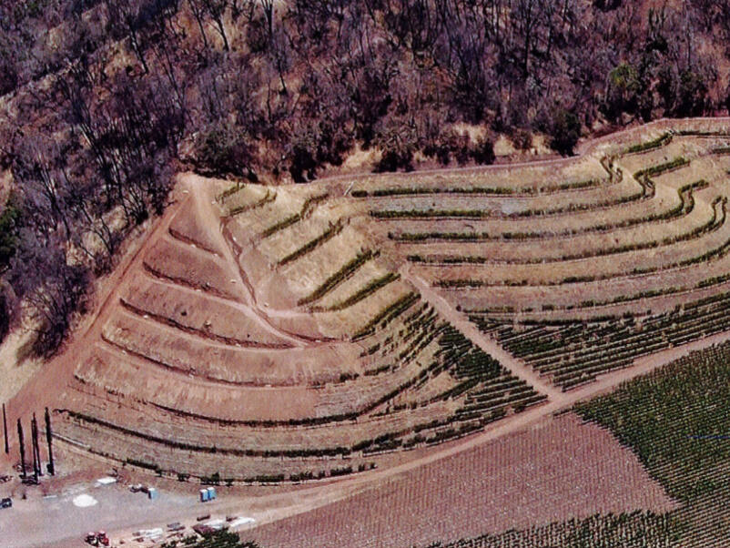 In this aerial photo included in a notice of violation issued by Sonoma County Department of Agriculture/Weights and Measures, alleged unpermitted terracing on the left side of the image appears to closely match similar terracing on the right. (Department of Agriculture/Weights and Measures)