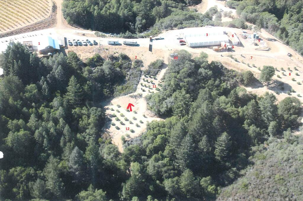 An aerial shot shows where pot is being grown near Cloverdale. The two greenhouses are labeled with a No. 3. (COUNTY OF SONOMA)
